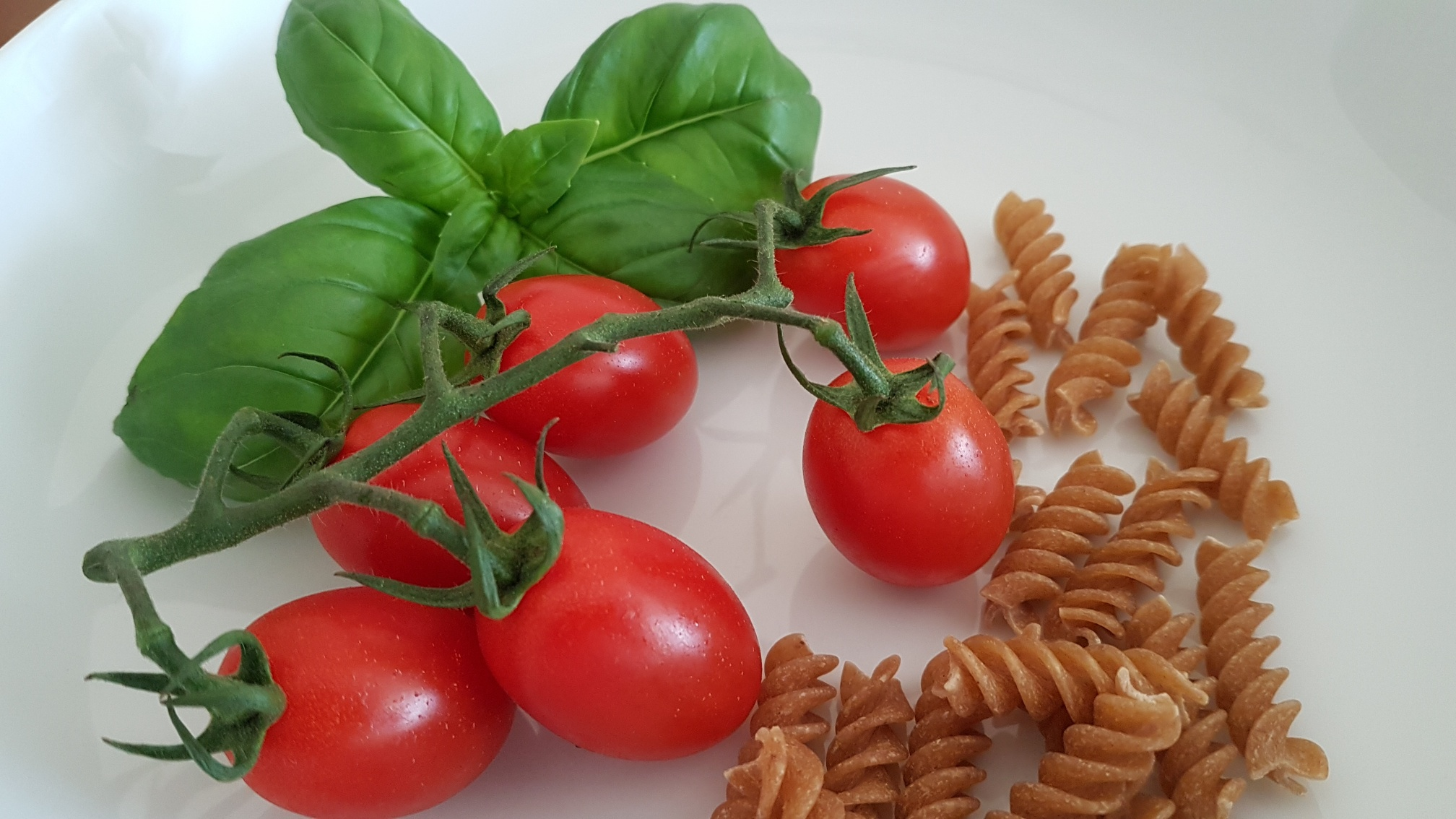 Ingredients for a cold pasta dish of tomatoes, large leaf basil and pasta shells